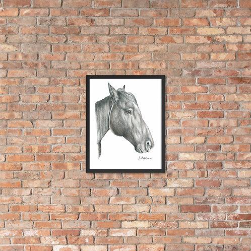 Profile Horse Framed poster