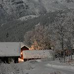 Harahorn_vinter.jpg