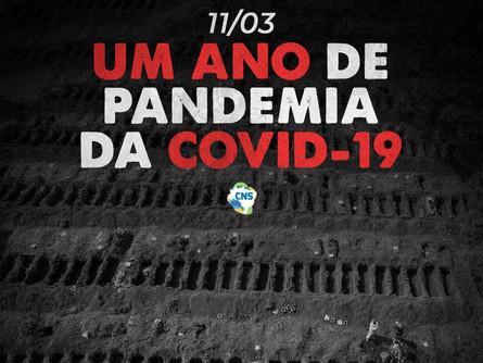 Um Ano de Pandemia da COVID-19