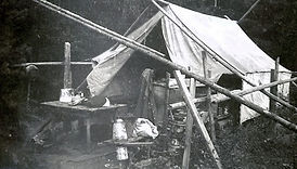 arbogast sheep camp in the 1950's.JPG