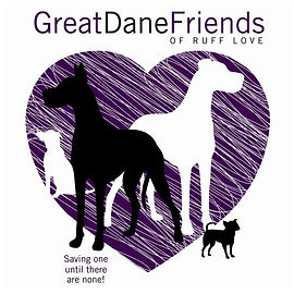 Great Dane and Friends.jpg