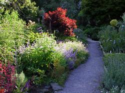 Garden-Jun-05 011b