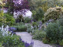 Garden-Jun-05 013