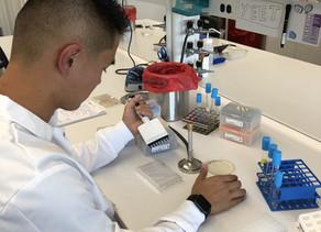 Undergrad Matthew Leong Joins the Lab