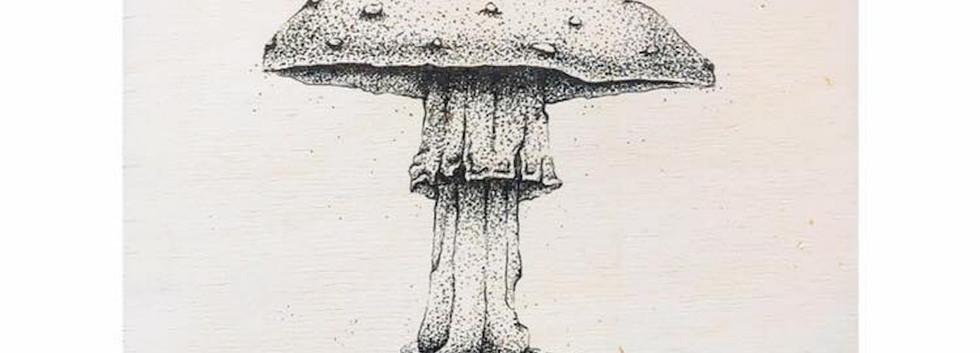 Untitled (Fly Agaric Mushroom)