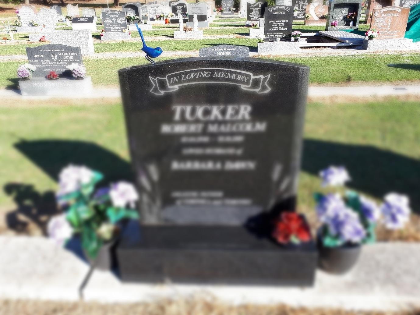 Memorial with blue wren