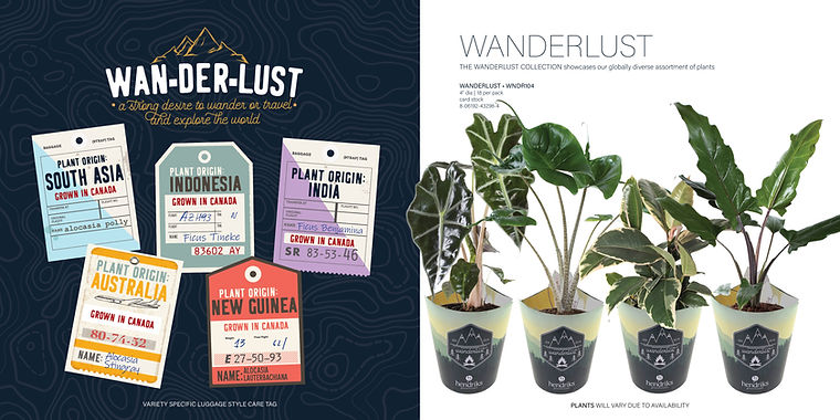An Image of Hendriks Greenhouses Wanderlust product line