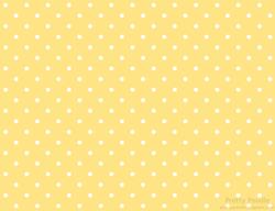 pbg002-dot-3