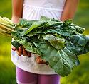 Child Holding Fresh Produce