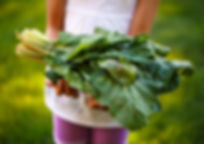 Child Holding Fresh Produce