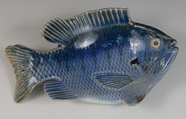 Tim Candy fish