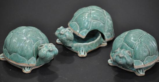 Pamela Timmons, box turtles.jpg