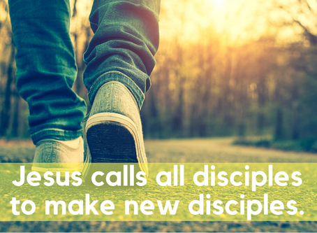 What do disciples do?