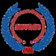 SDVOSB-logo-color_edited.png