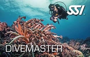 SSI Divemaster.jpg