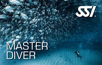 SSI Master Diver.jpg