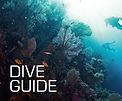 SSI Dive Guide.jpg