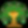 tree tmac acorn.png