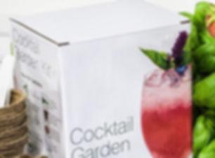 cocktail garden kit plant t.jpg