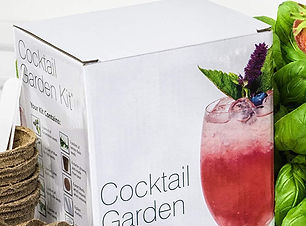 cocktail garden kit plant t.jpg