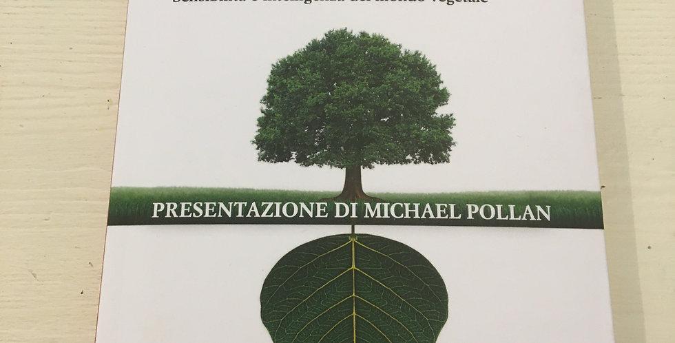 Verde Brillante - Stefano Mancuso e Alessandra Viola
