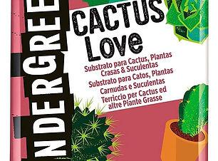 terriccio cactus Undergreen.jpg