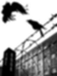 PrisonRook2.jpg