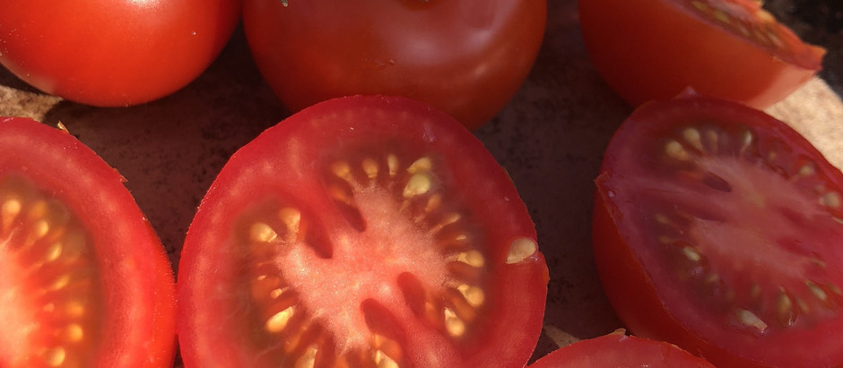 British Tomato Week starts 21st May 2018