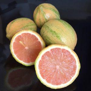 tiger lemons