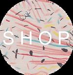 website shop button.png