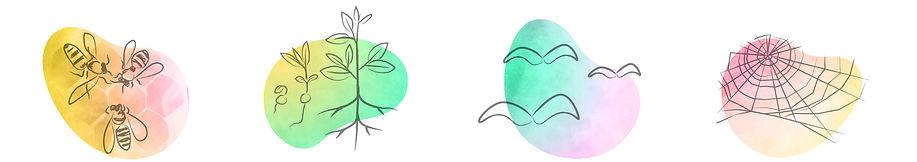 whatIdo-colours-2.jpg