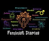 3. Feminist Diaries.jpg