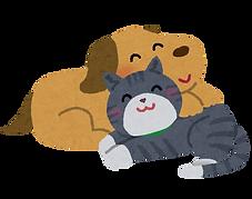 なかよし犬と猫.png