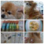 ちらし用STEP3-1.jpg