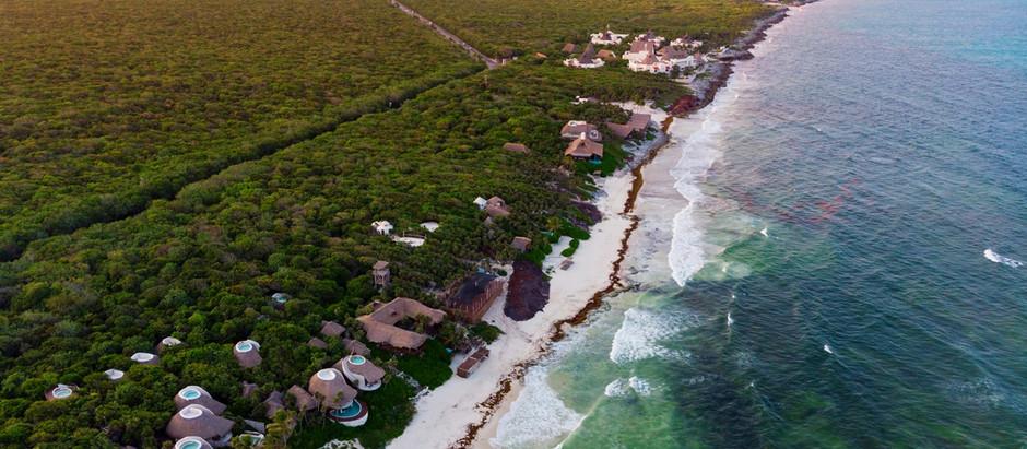 Se reactiva el turismo en Quintana Roo