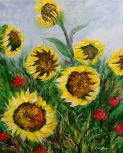 Nodding Sunflowers