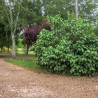tuin zonder borderranden