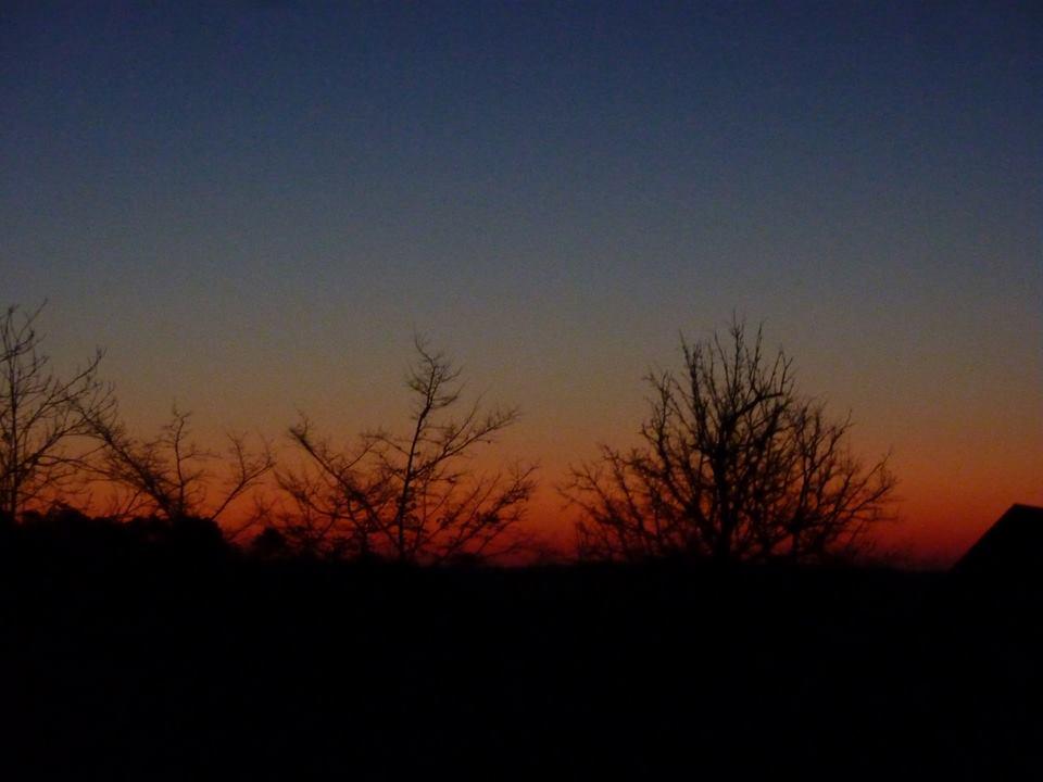 ochtendgloren