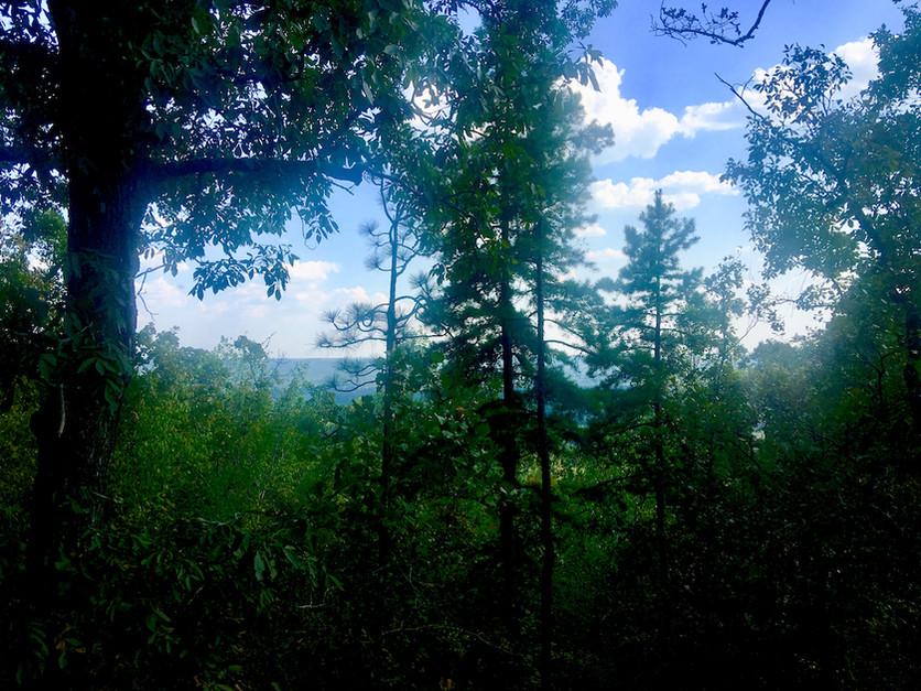 Moskoke Ecovillage, Alabama USA