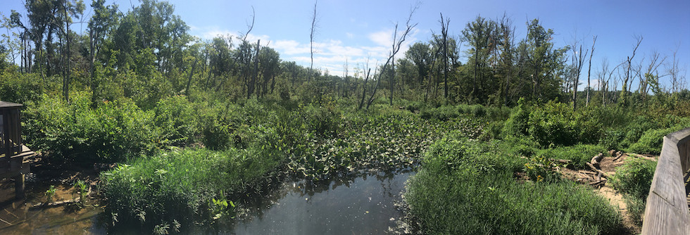 Piscataway Park, Maryland USA