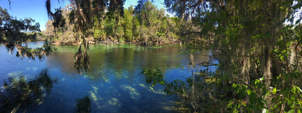 Florida Springs USA