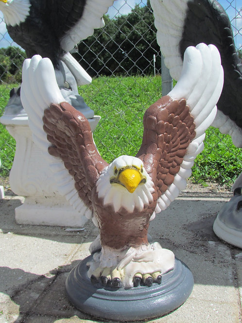 Medium Freedom Eagle