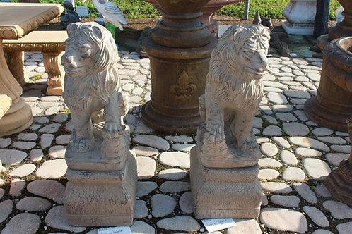 Lions on Pedestals