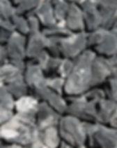 Zebra-2-1024x682.jpg