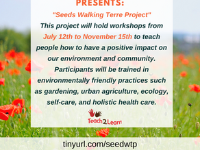 """""""Seeds Walking Terre Project"""""""