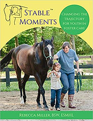 link to order stable moments book