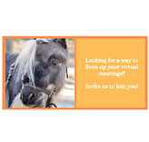 VirtualVisit.jpg