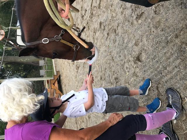 Child feeding horse a treat