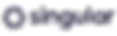 logo_singular_rocketlab copy 4_2x.png