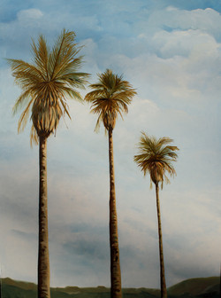 Three palms.JPG